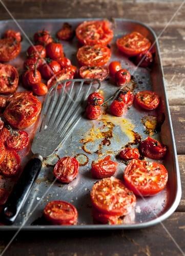 Ofengeröstete Tomaten auf Backblech