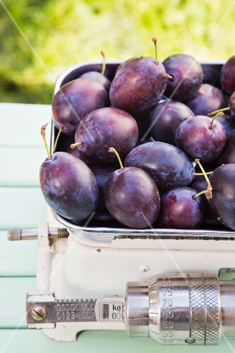 Fresh plums on a set of old kitchen scales
