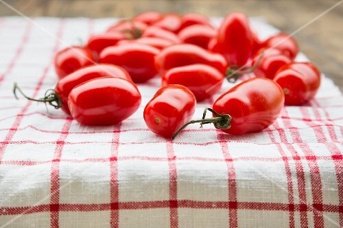 Plum tomatoes on a red & white tea towel