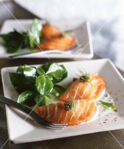 Salmon 'ravioli' with caviar and dill