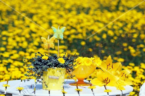 A garden table decorated with yellow flowers, in a field of yellow flowers