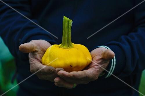 A man holding a pattypan squash
