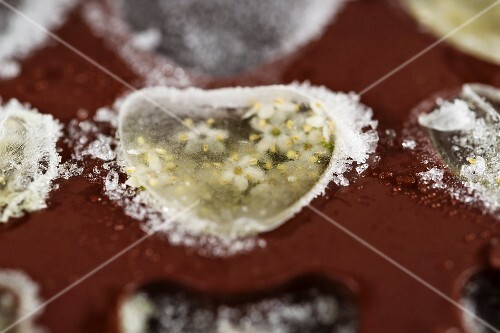 Heart-shaped ice cubes with elderflowers