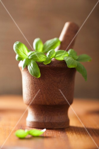 Basil in a wooden mortar