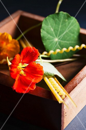 Nasturtiums and assorted pasta in a wooden box
