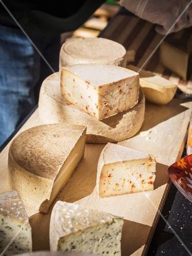 Assortment of Georgian cheeses.