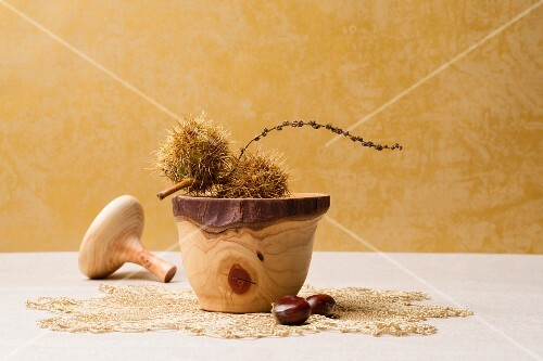 Sweet chestnuts in their casing, in a wooden pot