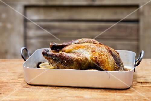 Roast chicken in a roasting tin