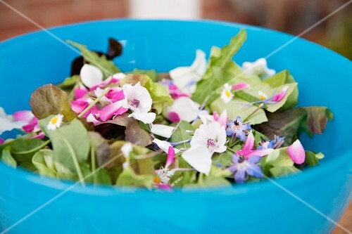 Mixed salad leaves with edible flowers in a bowl