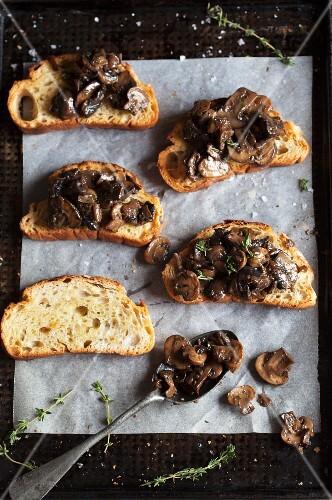 Mushroom ragout on toast