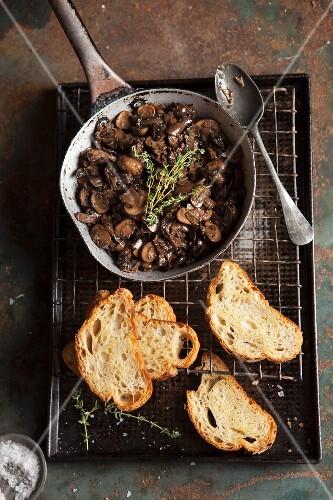 Mushroom ragout and slices of toast