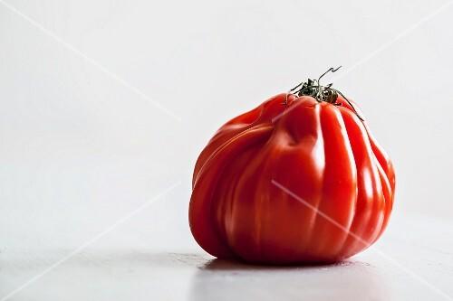 An oxheart tomato