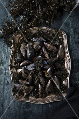 Mussels and seaweed on a tray