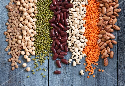Assorted pulses in rows