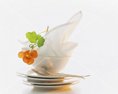 A still life featuring crockery, cutlery, a napkin and a nasturtium