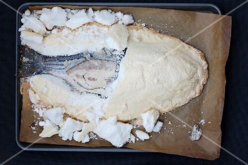Barsch im Salzteigmantel auf Backblech (Aufsicht)