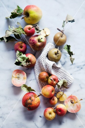 Äpfel der Sorte Heirloom