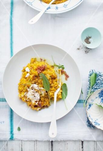Pumpkin risotto with ham and creme fraiche