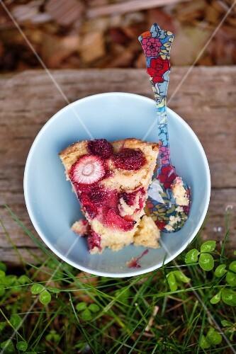 A piece of berry-rhubarb cake