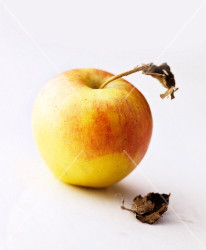A yellow apple against a white background