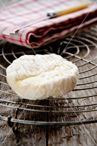 Saint Marcellin cheese from France, on a wire rack
