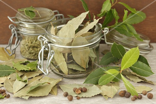Bay leaves, fresh and dried