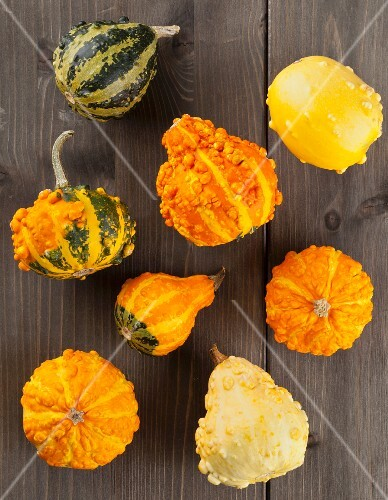 Assorted varieties of ornamental squash on a wooden table