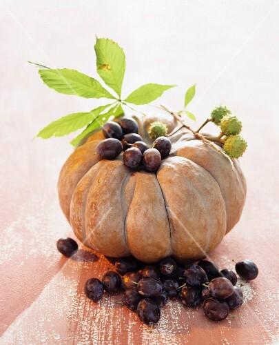 Muscade de Provence, damsons and horse chestnuts