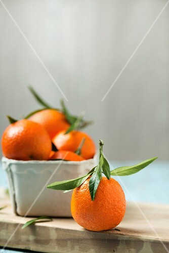 Mandarins, in a cardboard pot and to one side