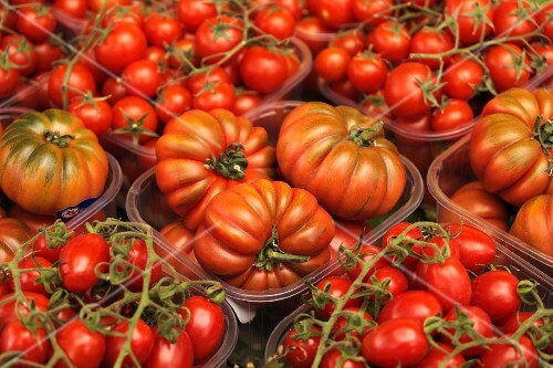 Beefsteak tomatoes and cherry tomatoes in plastic containers at the market