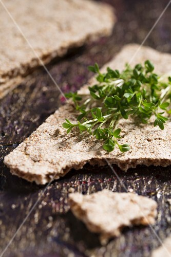Crispbread with cress