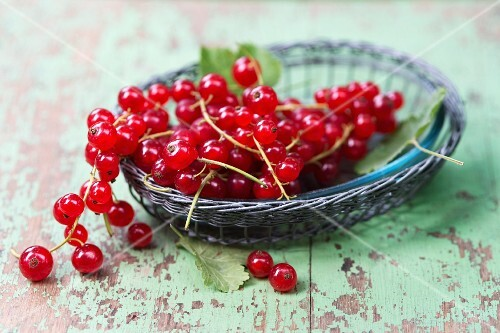 A little wicker basket with red currants(ribes rubrum)