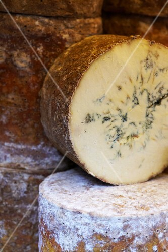 Several wheels of blue cheese (close-up)