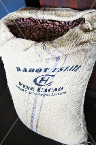 Lots of cocoa beans in a gunny sack