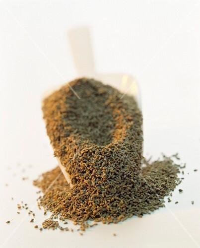 Fennel seeds in scoop