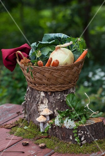 A Basket with Onions, Carrots and Cabbage