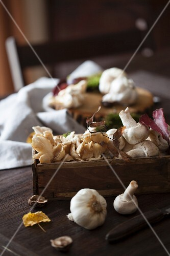 Mushrooms and Garlic in a Wooden Box