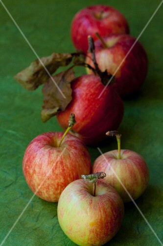 Several organic apples with leaves