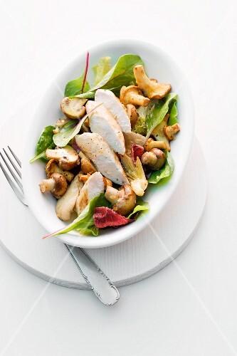 Mushroom salad with chicken