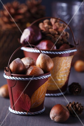 Painted autumn leaves stuck on small decorative buckets of hazelnuts, horse chestnuts and pine cones