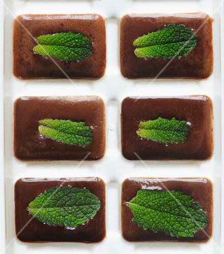 Chocolate sorbet with mint
