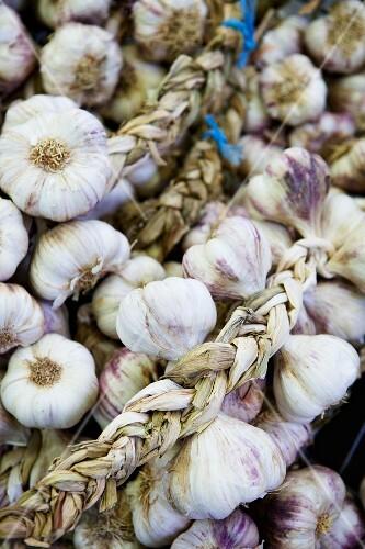 Bulbs of garlic