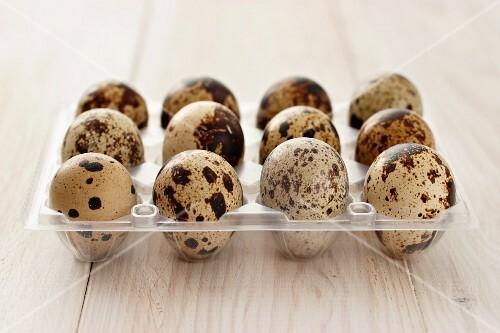 Twelve quail's eggs in an egg box