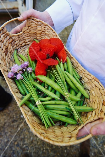 A chef holding a basket of peas in their pods, poppy flowers and chive flowers
