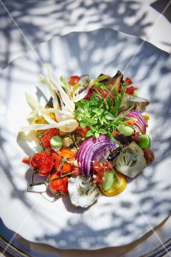 Vegetable salad with fresh herbs