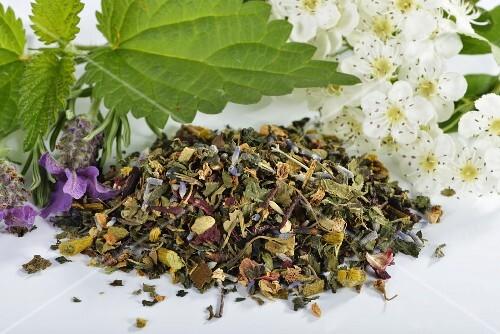 Herbal tea mixture with mistletoe, hawthorn leaves, stinging nettle, valerian, hibiscus flowers and lavender