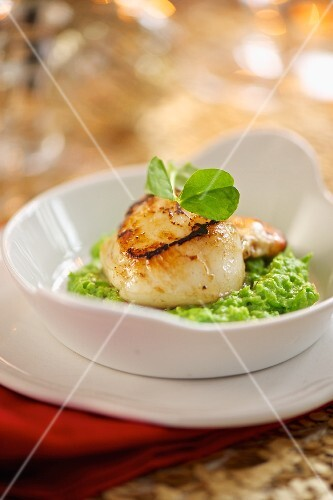 Fried scallops on a bed of mushy peas