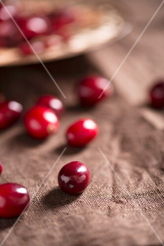 Fresh cranberries on brown material