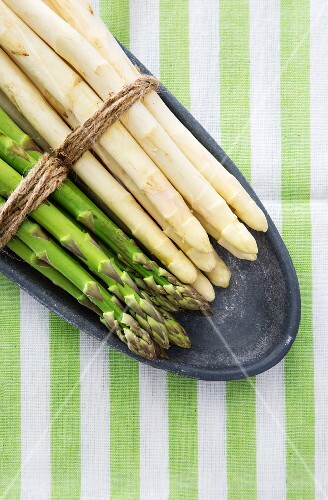 Green and white asparagus, tied in bundles, on a plate