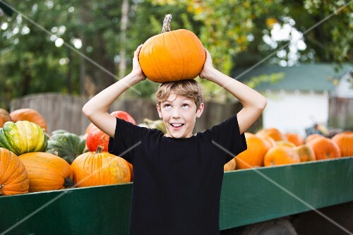 A boy balancing a pumpkin on his head